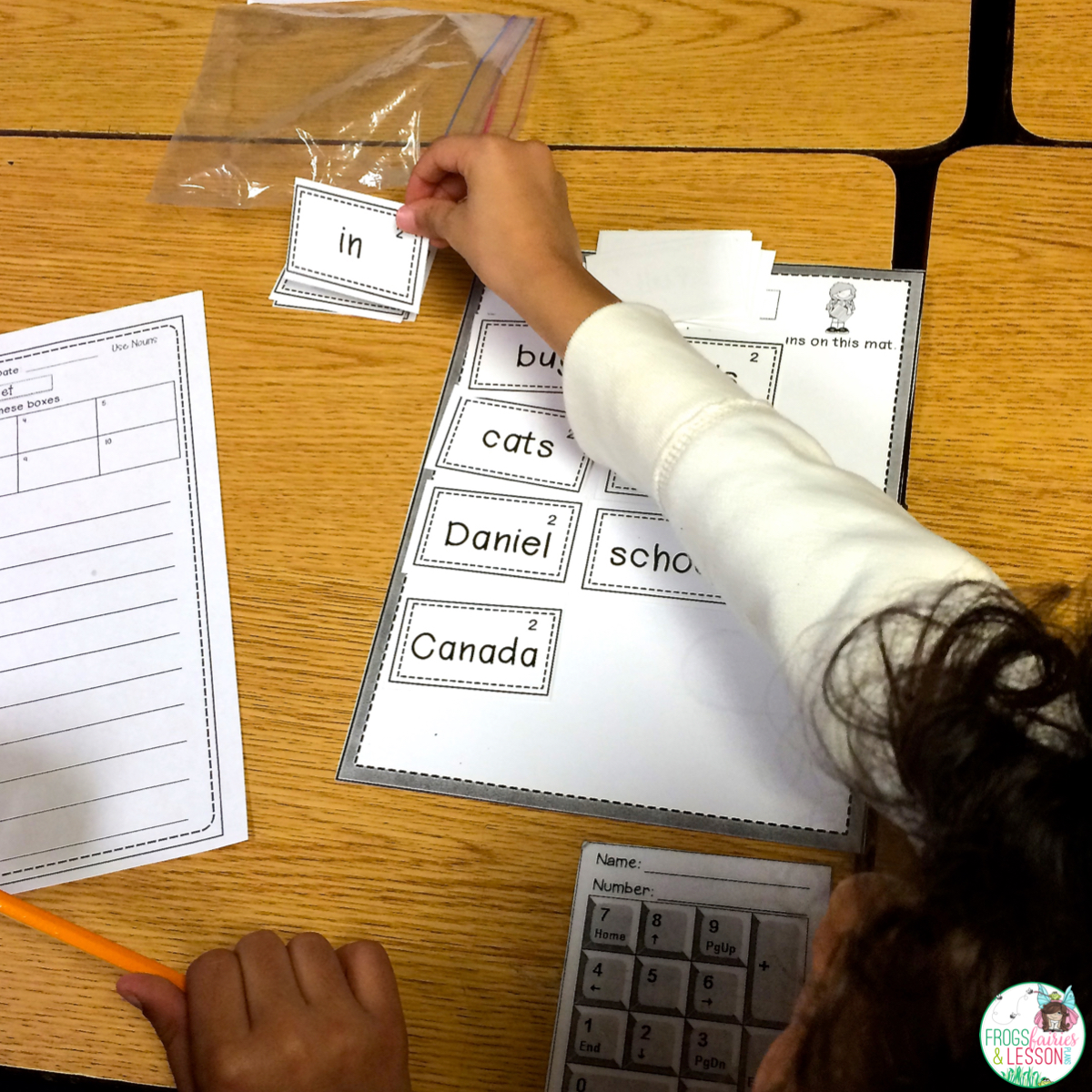 Literacy Center idea for sorting nouns